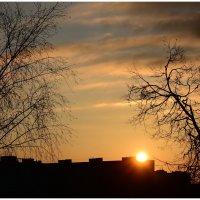 Солнце над городом. :: Paparazzi