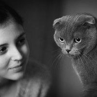 Человек и кошка :: Артем Воробьев