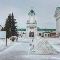 Спасо-Яковлевский Димитриев монастырь :: Константин