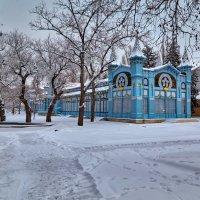 Зима в Пятигорске :: Николай Николенко