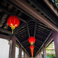 китайские фонарики :: Олеся Семенова