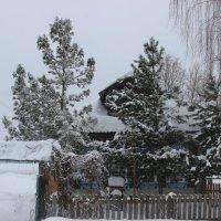 Опять снег и метель :: Дмитрий Солоненко