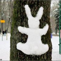 Заяц-беляк... натуральный! :: Нина Бутко