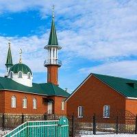 Сельская мечеть :: Любовь Потеряхина