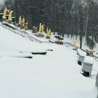 Одиночество в с.. снегу :: tipchik