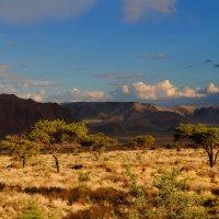 Африка.  Намибиа. :: Jakob Gardok