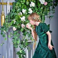 Нежная роза :: Катерина Терновая