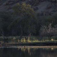 солнце начинает освещать край озера :: Георгий А
