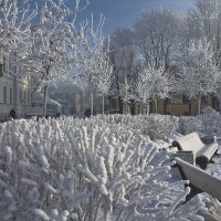 Вот она - настоящая зима! :: Senior Веселков Петр