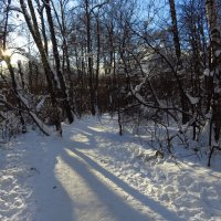 Пугают, что завтра - мороз. Но завтра! :: Андрей Лукьянов