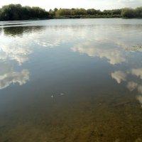 Облака любит река... :: Ольга Кривых