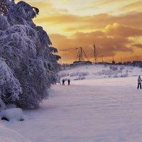 Приносит удовольствие нам бег – И просто, и, особенно, на лыжах. :: Анна Приходько