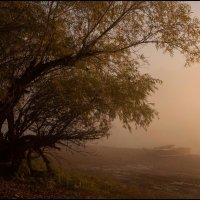 Утро туманное :: Алексей Патлах