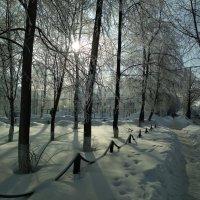 Зима в Сибири :: Георгий Светлов