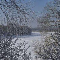 Кружево зимы. :: Елена Струкова