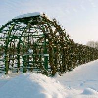 Зимняя галерея Берсо. :: Лия ☼