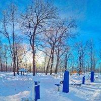 Зимний лесопарк. :: Михаил Николаев
