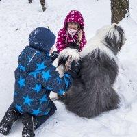 собачки и детки :: Лариса Батурова