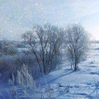 Морозное утро :: Наталья Ерёменко