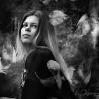 осенний листопад :: Оксана Дзись