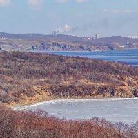 Владивосток, остров Русский :: Эдуард Куклин