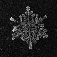 Снежинка :: Александр Корсиков