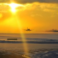 морозным утром :: vg154