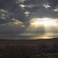 и стал свет :: svabboy photo
