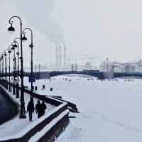 чёрно-белая зима :: Елена