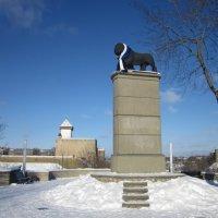 Шведский лев в эстонском триколоре :: veera (veerra)