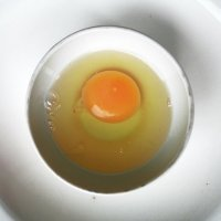 Яйцо мироздания :: Татьяна Silueta