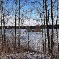 На озере в феврале :: Маргарита Батырева