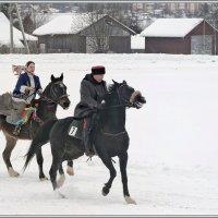 В Вологодских снегах. :: Vadim WadimS67