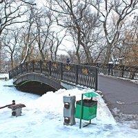 Мост :: _ a.bakirova _