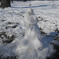 Какая зима, такой и снеговик :: Галина