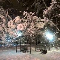 зима :: Елена Натфулина