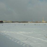 Великий исход народов ...на лёд.. :: tipchik