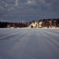 Тени зимы :: Swetlana V