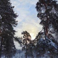 Холодный рассвет :: Наталья Ерёменко