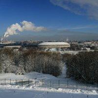 Вид с обзорной площадки на Воробьевых Горах (Москва) :: Юрий Поляков