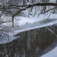 Не все реки замерзают :: Яков Реймер