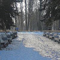 Приморский парк Победы. :: Валентина Жукова