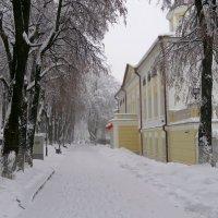 Снежно. :: Наталья Соколова