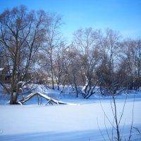 Зимняя картинка :: kolyeretka