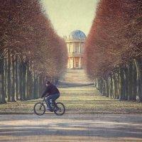 Весна в Потсдаме. :: Denis Makarenko