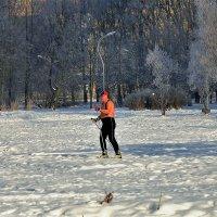 И мороз не страшен... :: Sergey Gordoff