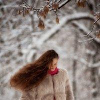 Снег :: Светлана Фернандес