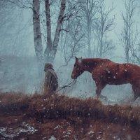 Туман :: Андрей Ерастов