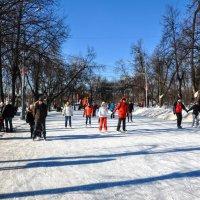 Ледовые аллеи... :: Анатолий Колосов