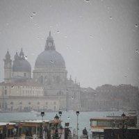 Дождь :: Виктор К Доние